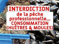 INTERDICTION MOULES